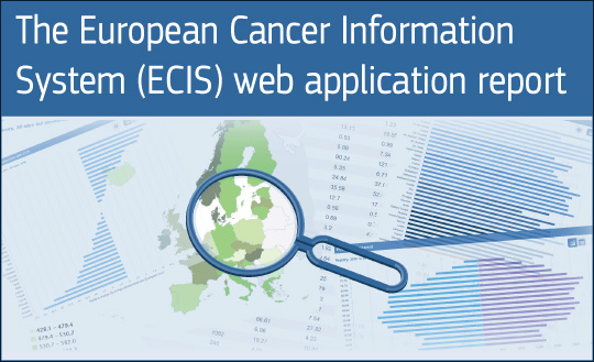 ECIS web-application-report.jpg